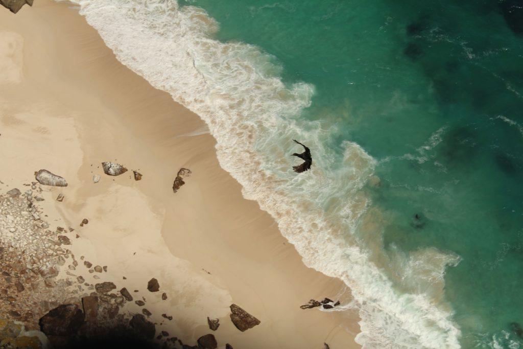 Cape Point mit Blick aufs Meer